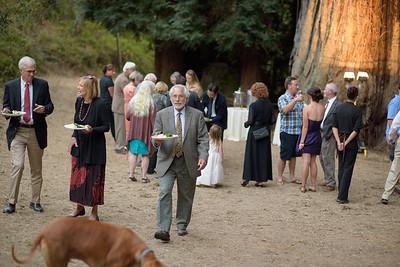 4202_d810_Morgan_and_Cliff_Santa_Cruz_Private_Estate_Wedding_Photography