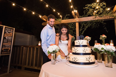 8199_d810_Rebecca_and_Tom_Rancho_Nicasio_Wedding_Photography