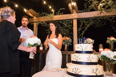 8222_d810_Rebecca_and_Tom_Rancho_Nicasio_Wedding_Photography