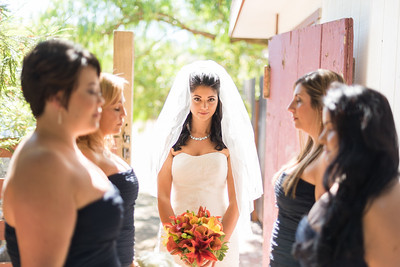 6716_d810_Rebecca_and_Tom_Rancho_Nicasio_Wedding_Photography
