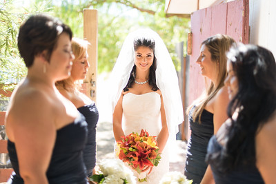 6718_d810_Rebecca_and_Tom_Rancho_Nicasio_Wedding_Photography
