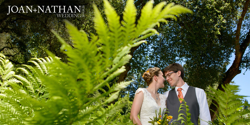 River_House_Wedding_Photography_-_Ben_Lomond_-_Joan_and_Nathan_01