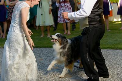 3864_d800b_Joan_and_Nathan_River_House_Ben_Lomond_Wedding_Photography