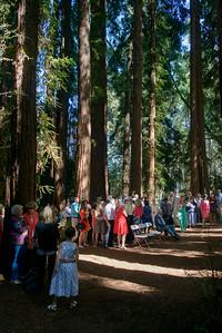 6623_d800a_Abbie_and_Joe_Roaring_Camp_Railroad_Felton_Wedding_Photography