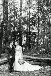 5963_d800b_Abbie_and_Joe_Roaring_Camp_Railroad_Felton_Wedding_Photography
