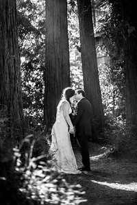 5937_d800b_Abbie_and_Joe_Roaring_Camp_Railroad_Felton_Wedding_Photography