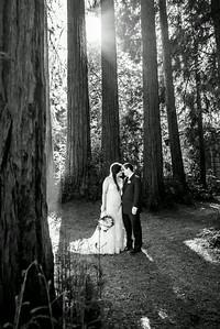 6679_d800a_Abbie_and_Joe_Roaring_Camp_Railroad_Felton_Wedding_Photography
