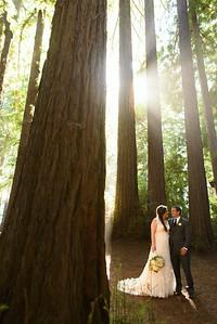 6674_d800a_Abbie_and_Joe_Roaring_Camp_Railroad_Felton_Wedding_Photography