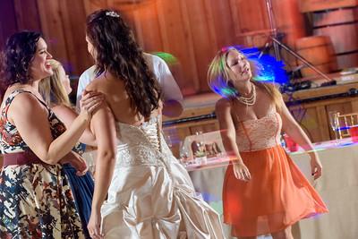 2219_d810a_Alexis_and_Zach_Roaring_Camp_Felton_Wedding_Photography