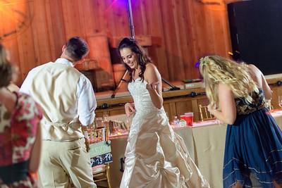 2209_d810a_Alexis_and_Zach_Roaring_Camp_Felton_Wedding_Photography