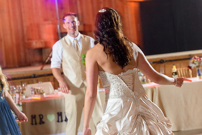 2216_d810a_Alexis_and_Zach_Roaring_Camp_Felton_Wedding_Photography