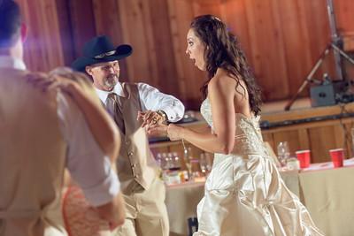 2194_d810a_Alexis_and_Zach_Roaring_Camp_Felton_Wedding_Photography