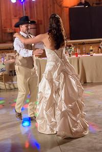 2177_d810a_Alexis_and_Zach_Roaring_Camp_Felton_Wedding_Photography