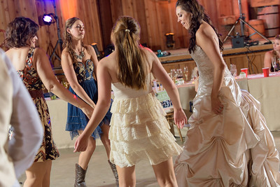 2197_d810a_Alexis_and_Zach_Roaring_Camp_Felton_Wedding_Photography