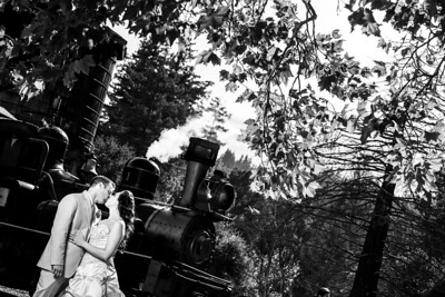 1559_d810a_Alexis_and_Zach_Roaring_Camp_Felton_Wedding_Photography