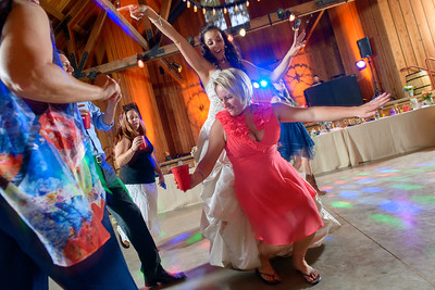 3050_d800b_Alexis_and_Zach_Roaring_Camp_Felton_Wedding_Photography