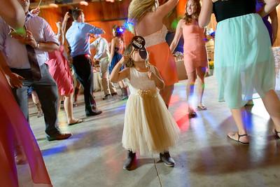 3191_d800b_Alexis_and_Zach_Roaring_Camp_Felton_Wedding_Photography