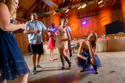 3328_d800b_Alexis_and_Zach_Roaring_Camp_Felton_Wedding_Photography