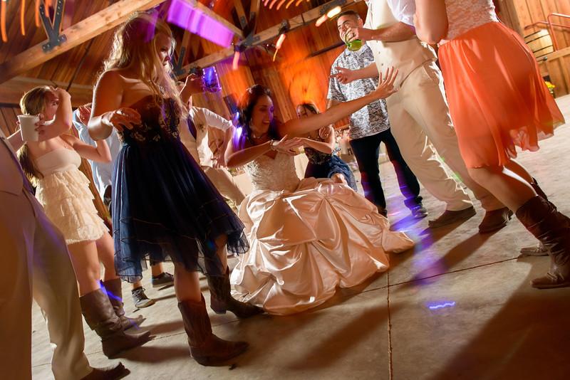 3392_d800b_Alexis_and_Zach_Roaring_Camp_Felton_Wedding_Photography