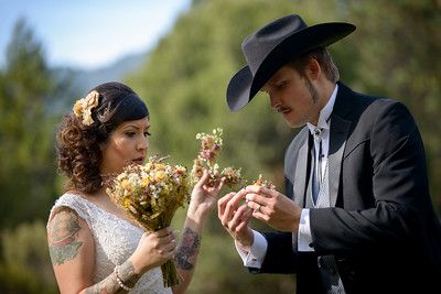 5330_d800b_Jennifer_and_Stefan_Roaring_Camp_Felton_Wedding_Photography
