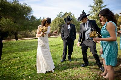 0820_d800a_Jennifer_and_Stefan_Roaring_Camp_Felton_Wedding_Photography