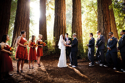 8531-d700_Meghan_and_John_Felton_Wedding_Photography_Roaring_Camp_Railroad