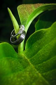 0962-d300_Christina_and_Jamie_Aptos_Wedding_Photography