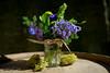 9202_d800_Meredith_and_Derick_Sand_Rock_Farm_Aptos_Wedding_Photography