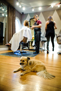 7288-d700_Monica_and_Ben_Saratoga_Wedding_Photography_Foothill_Club
