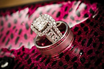 0603-d700_Christine_and_Joe_Scotts_Valley_Hilton_Wedding_Photography