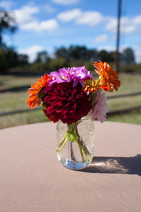 vicki-joanne-wedding-3788