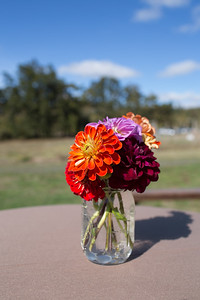 vicki-joanne-wedding-3789