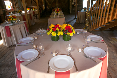 vicki-joanne-wedding-3755