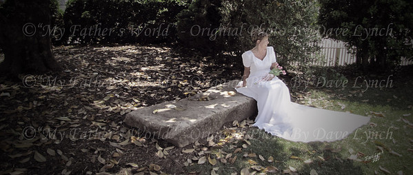 Fine Art Wedding Photography Packages By Dave Lynch