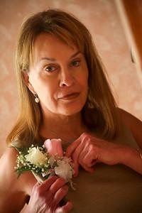 Vivian Clinton Bent Mountain Virginia Wedding