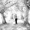 Wedding 07/19/14 :