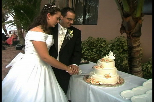 The Wedding of Amber & Doug