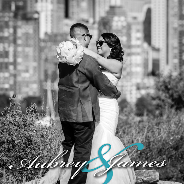 Aubrey & James' Wedding Album