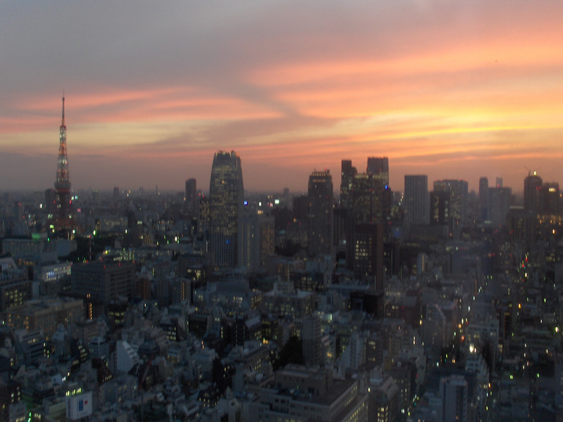 This is a shot from the night we arrived in Tokyo. This is a picture from our room at Park Hotel Tokyo in Shiodome.