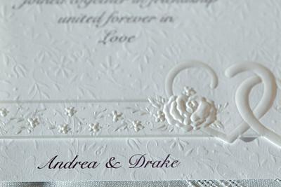 Andrea and Drake Doyle Wedding Proofs