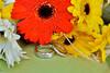 sla-w-082012-0114