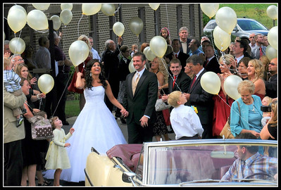 Wedding Gallery to View