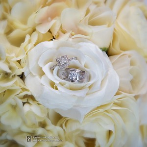 Weddings & Special Events by Steve Toepp / Midwest Photographics