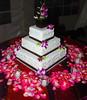 weddings-166