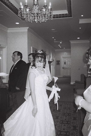 Wedding Portraits by Shola