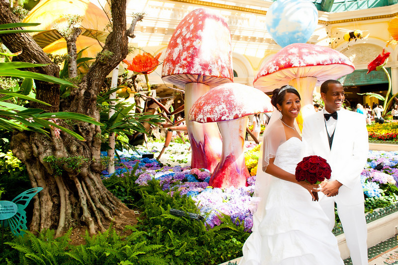 Weddings at the Bellagio pictures