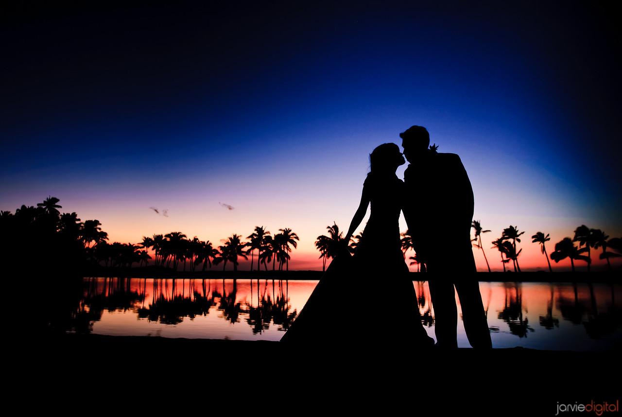 hawaii silohuette