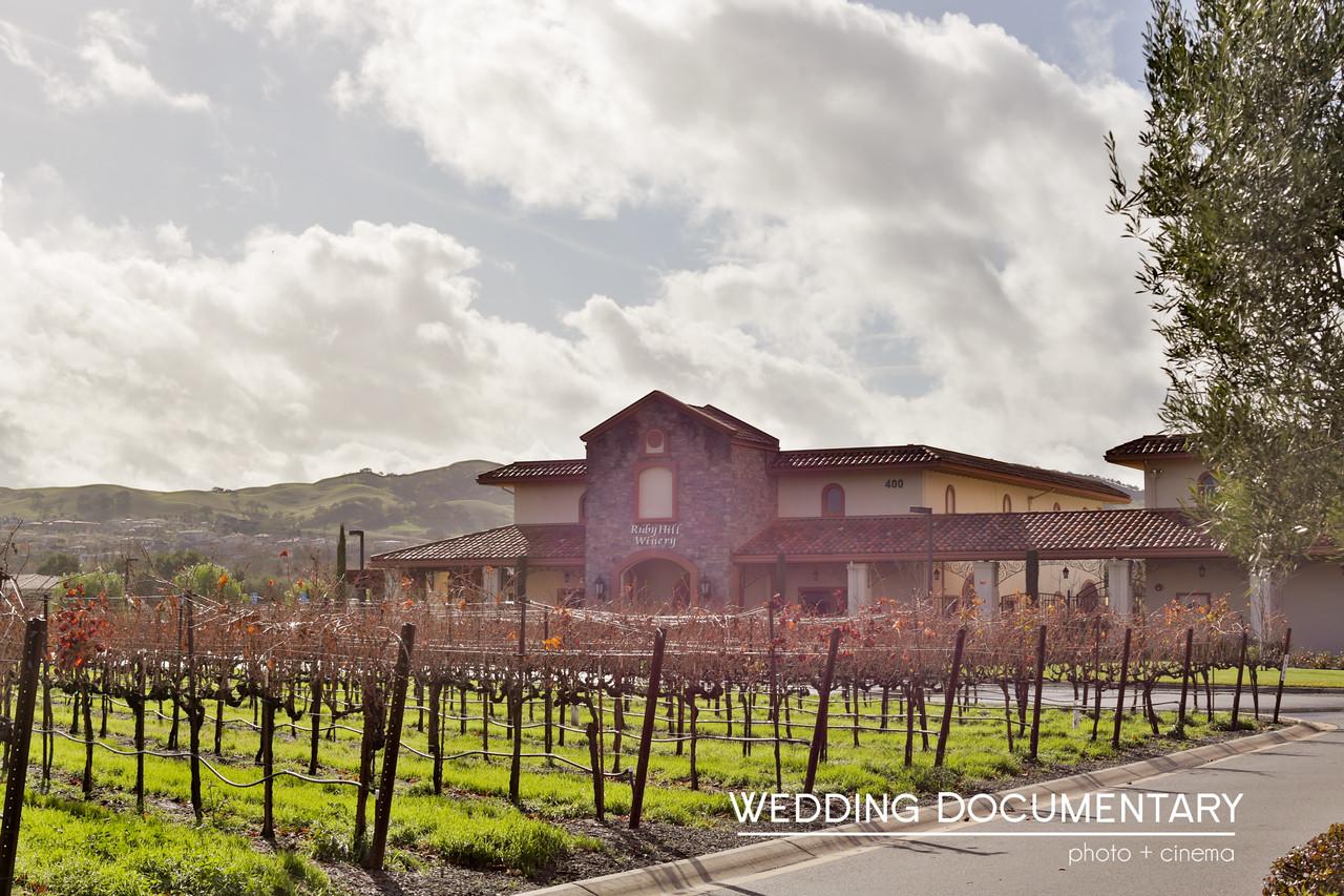 Deepika_Chirag_Wedding-675