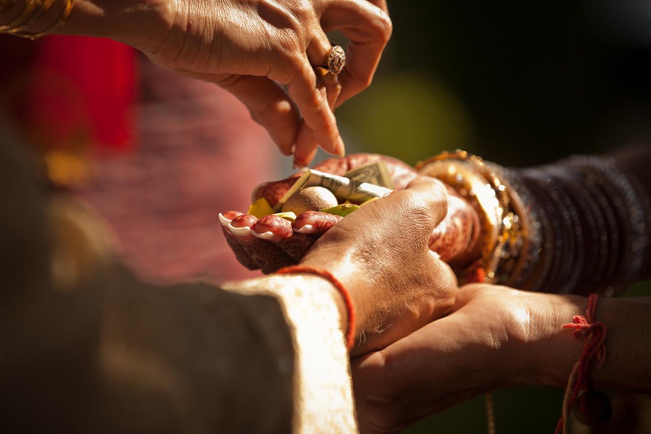 Sheena_Romish_Wedding-1341