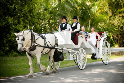 Natalie & Rami's fairytale wedding at the Sandbar Restaurant on Anna Maria Island  www.groupersandwich.com  Photos by Dara Caudill www.IslandPhotography.org  Music by Chuck Caudill www.ChuckCaudill.com  Officiated by Brenda Lynas of www.HeavenlyVows.com  Horse drawn carriage by Sunshine Carriages of Sarasota www.SunshineCarriages.com